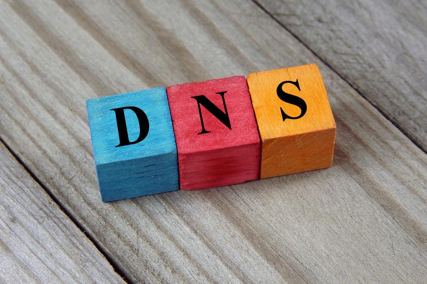 Primary DNS Zone